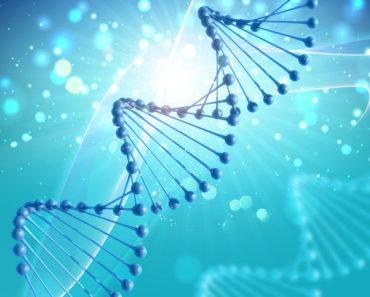Epilepsi genetik midir?